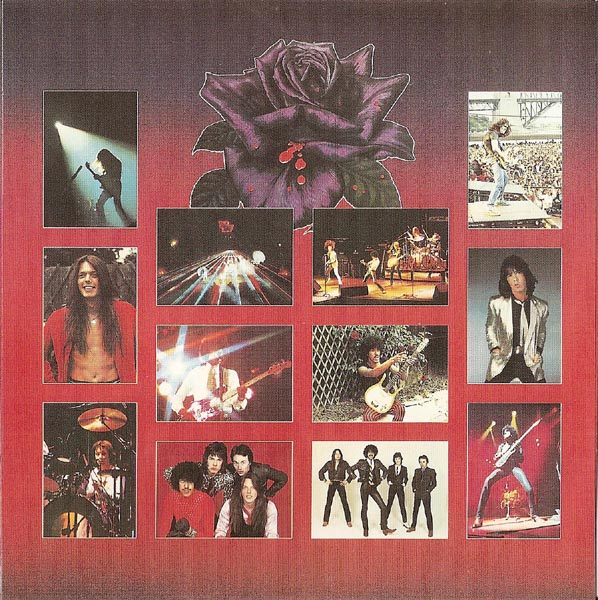 LP Inner Sleeve (other side), Thin Lizzy - Black Rose