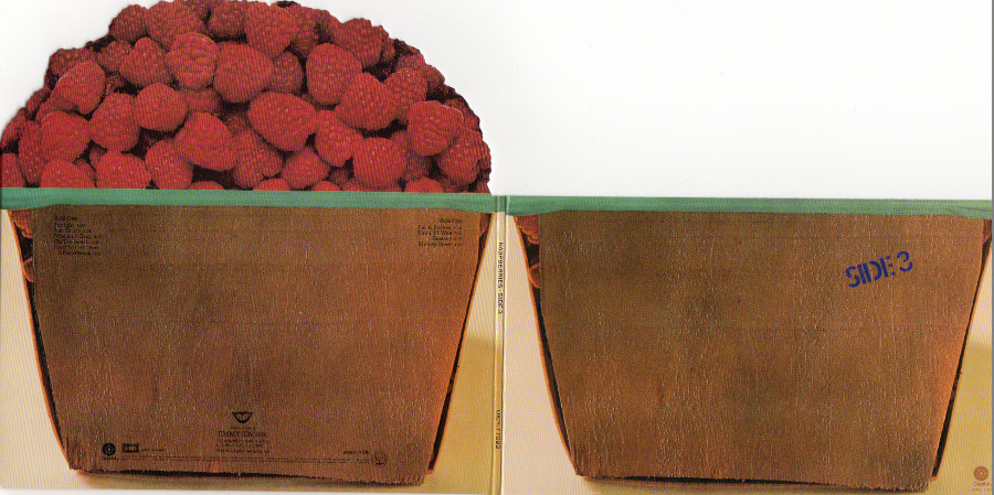 Outside gatefold sleeve, Raspberries - Side 3