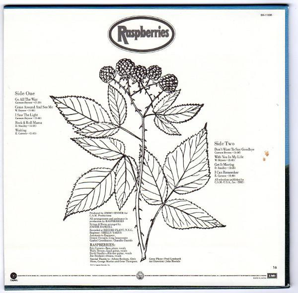 Back sleeve, Raspberries - Raspberries