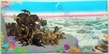 Santana - Amigos, Gatefold open
