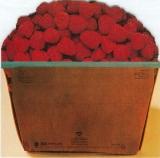 Raspberries - Side 3, Back cover