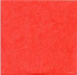 Cougar Mellencamp, John - Scarecrow (+1 bonus track), Back inner sleeve